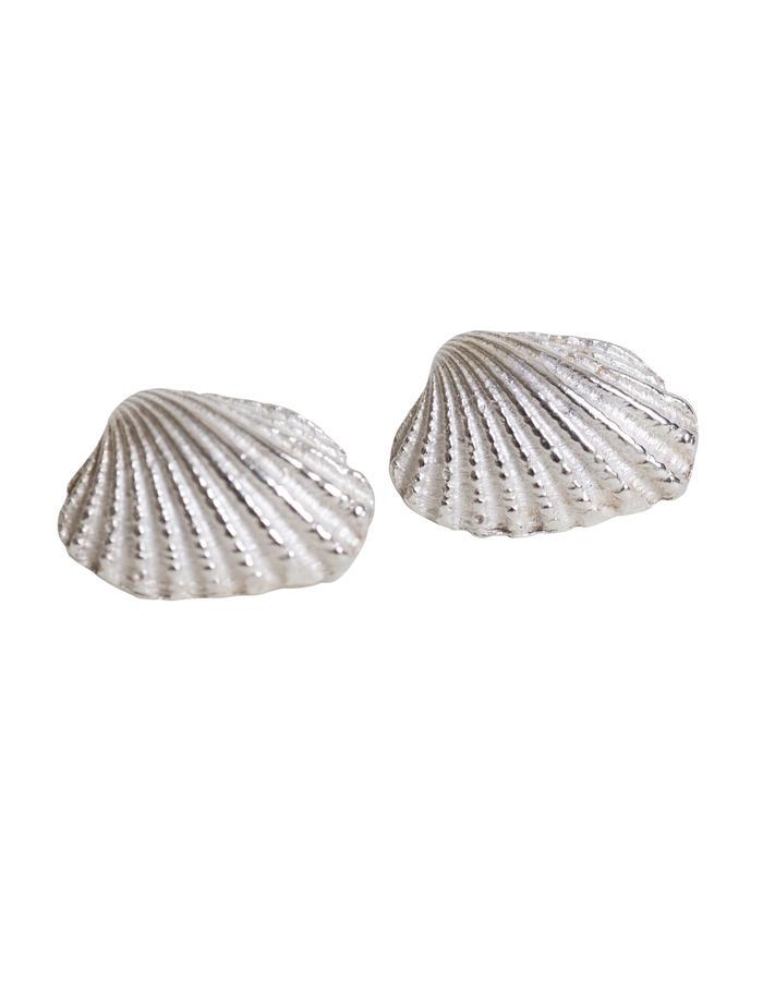 Ark Shell Stud Earrings