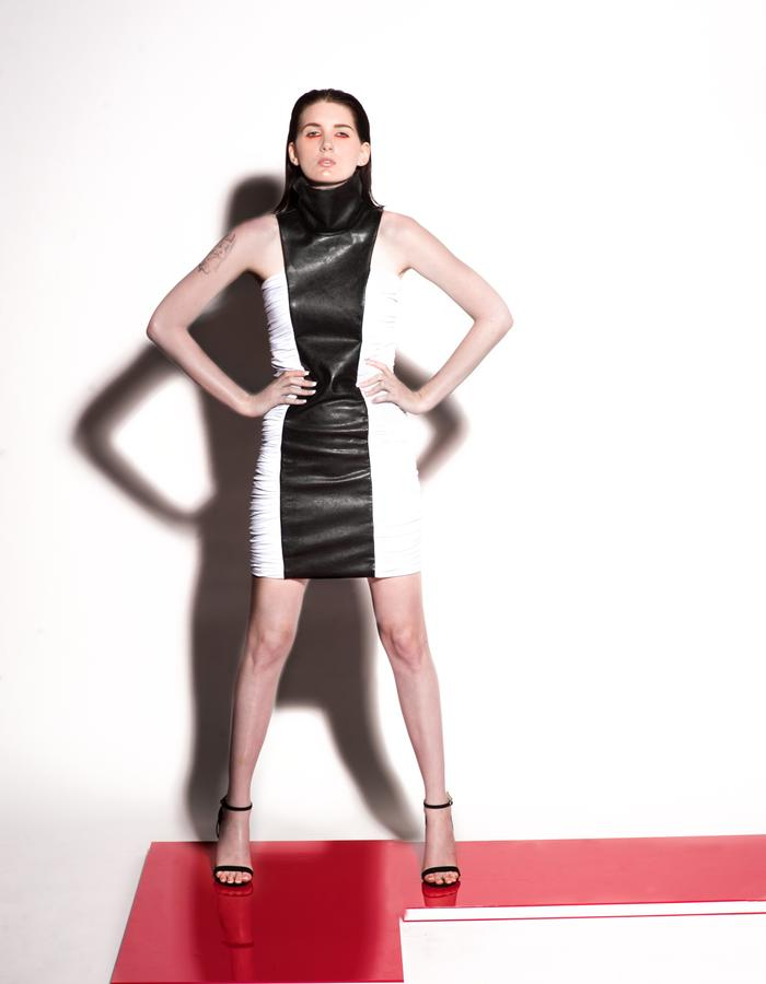Christian Allana Look5- High Collar Leather and Silk Jersey Dress