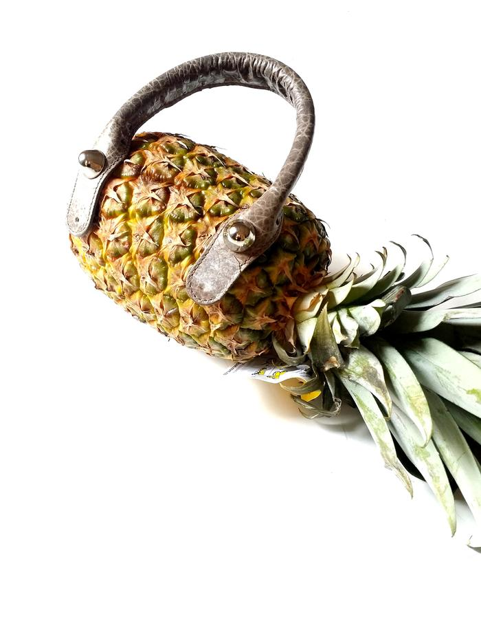 Pineapple photo shooting