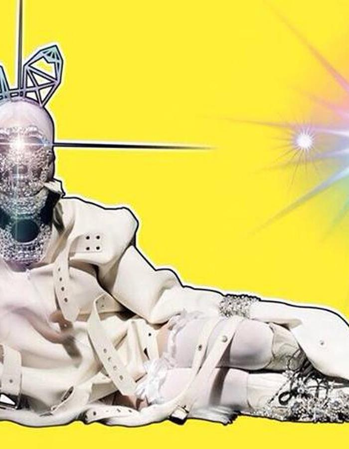 Lady Gaga's artRave Tour Book
