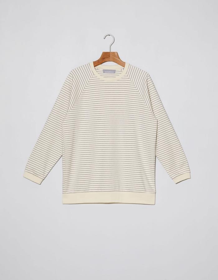 Tropical stripes raglan sweater